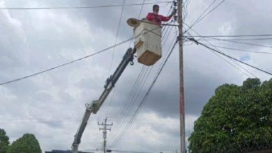 Photo of Entre cinco y 10 fallas diarias registra el sistema eléctrico en Simón Rodríguez