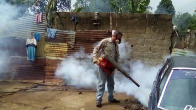 Photo of Casos de paludismo en Anzoátegui disminuyeron 51% respecto al 2019